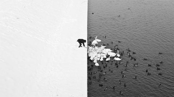 Resultado de imagem para surreal contrasts