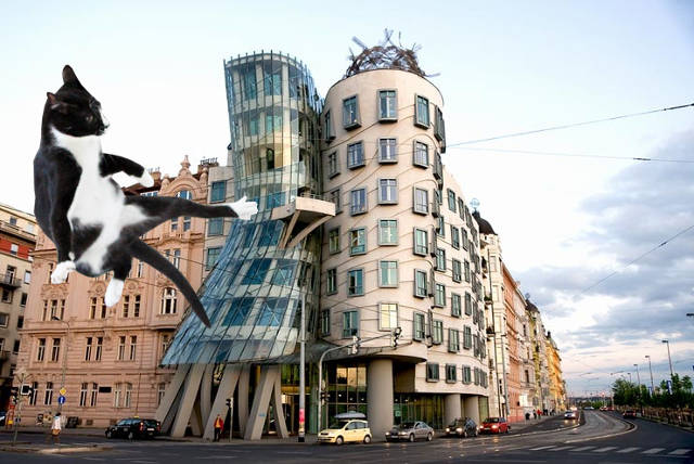 Lolcats Descend On The World 39 S Most Famous Architecture