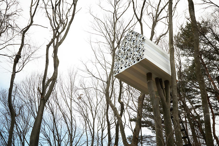 <p>Nendo's Bird Apartment is perched in the forest of Nagano prefecture.</p>