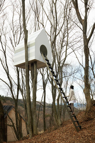 <p>Through the peepholes, people can watch the activity inside the birdhouses.</p>