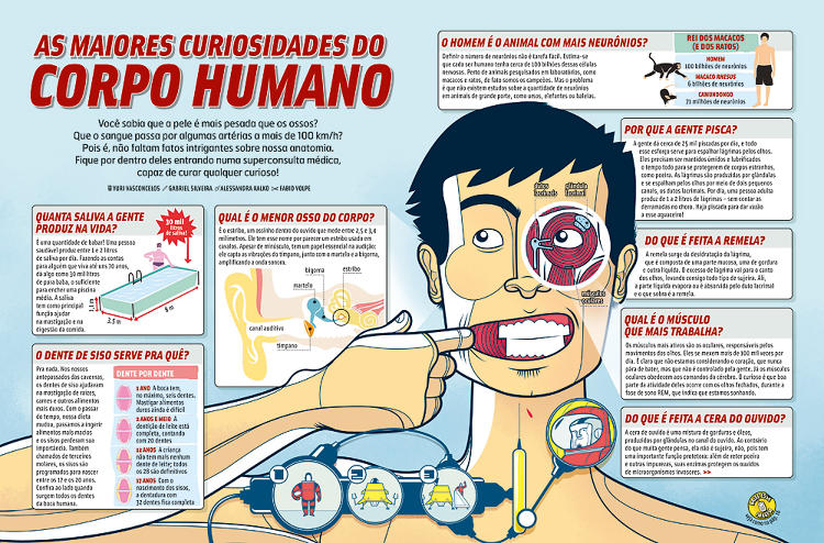 <p>The Brazilian magazine<em> Mundo Estranho</em> created a lively map of &quot;The Greatest Curiosities of the Human Body&quot; in 2008. <a href=&quot;http://images.fastcompany.com/upload/ju_information_graphics_01.jpg&quot; target=&quot;_self&quot;>Click here to view larger.</a></p>