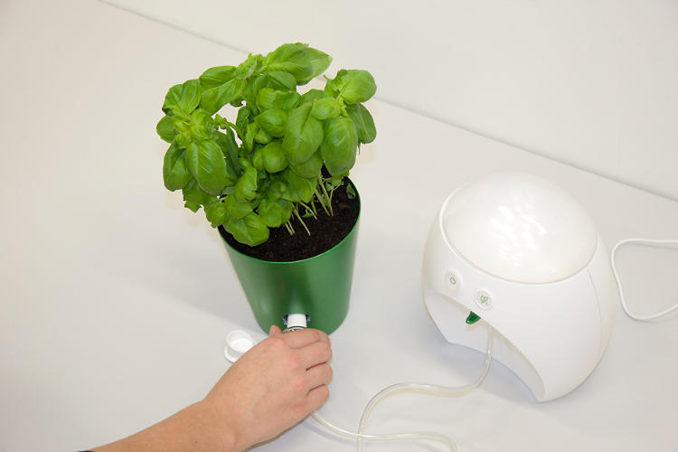 <p>&quot;Plugs in&quot; to a plant.</p>