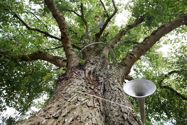 <p>The sculptures call attention to sounds of things that exist naturally: trees, wind, and water.</p>