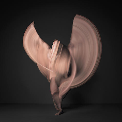 <p>The images are actually composites of several thousand individual photographs, carefully compiled to show a nude dancer's fluid movements.</p>