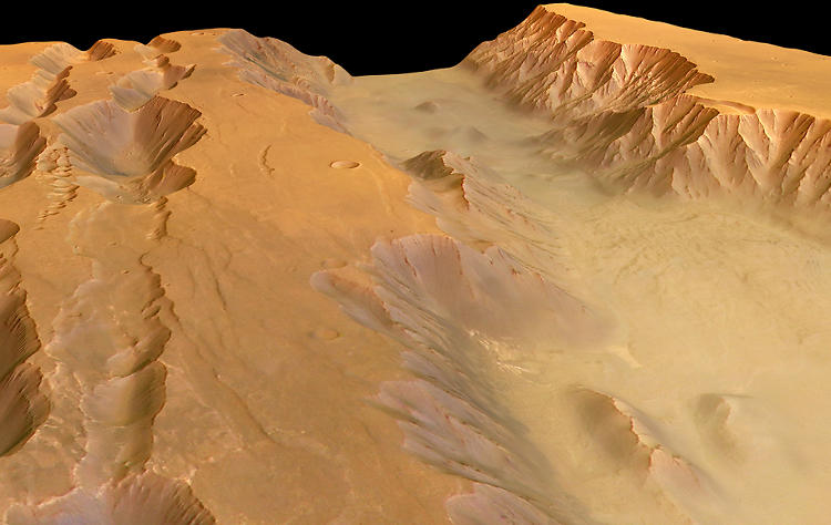 <p>A trough called the Coprates Chasma, which is part of the massive Valles Marineris system.</p>