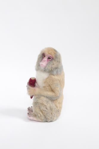 <p>This dude--a Japanese macaque--is really, really cute.</p>