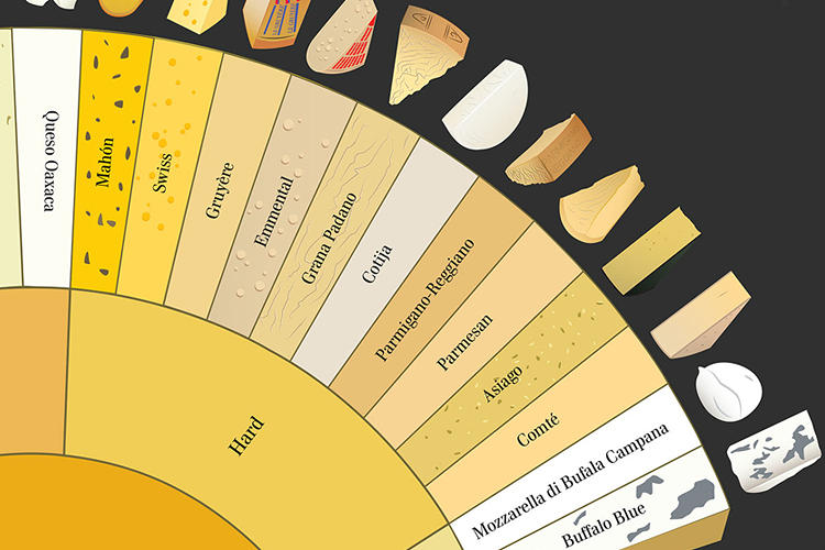 "<p>""There was a natural cutting off point where once we went over the cheeses found in our research really represented artisanal and not widely distributed varieties,"" Pop Chart Lab tells Co.Design.</p>"