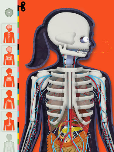 <p>The Human Body allows kids to check out the workings of the human body system by system, thanks to a series of overlays.</p>