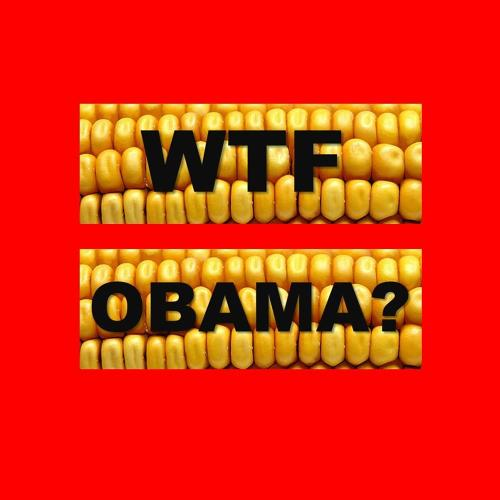<p>But isn't Obama for marriage equality? He is. But while everyone was focused on the Supreme Court, he also signed the so-called Monsanto Protection Act, a law which will <a href=&quot;http://www.cbsnews.com/8301-250_162-57576835/critics-slam-obama-for-protecting-monsanto/&quot; target=&quot;_blank&quot;>protect makers of genetically modified seeds from lawsuits over their health risks.</a></p>