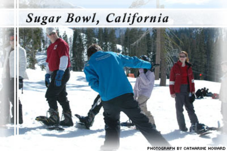 <p> For the past six years, Sugar Bowl has maintained an Environmental Committee of management and employees who are dedicated to improving the practices of the resort. The committee has set several goals for a greener future, including: </p> <ul> 	<li>Making a commitment to offset 100 percent of its energy use and partnering with 3 Phases Energy, a company that purchases renewable energy from California wind farms.</li> 	<li>Implementing a container reduction and recovery program to properly dispose of hazardous waste materials such as solvent, antifreeze and petroleum.</li> 	<li>Constructing an on-site garbage and recycling facility in 2003 to help minimize waste handling and transportation.</li> </ul>