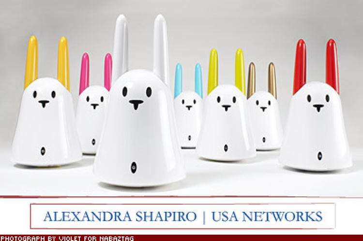 <p>&quot;I often dream what life would be like if I had a personal assistant. Nabaztag [a Wi -Fi enabled smart rabbit figurine that does menial tasks such as reading you your email] may be better no attitude or salary.&quot; $175; <a href=&quot;http://www.nabaztag.com/&quot; target=&quot;_blank&quot;>nabaztag.com</a></p>