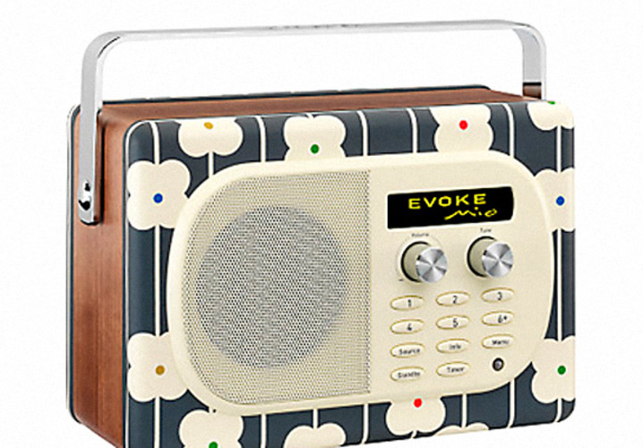 If you'd like to give your ears a rest (from ear buds, not your   questionable taste in music) then this radio belongs on your wish list.   There is something very satisfying about crystal clear Classic FM or   80's greatest hits being played into your home from something as stylish   as this: the Orla Kiely print makes this gadget more than just easy on   the ears, but easy on the eyes too. You can browse the airwaves or   connect your iPod for instant gratification. <br /><br /> <strong>About $235, order online from <a href=&quot;http://www.johnlewis.com/231318314/Product.aspx&quot;>John Lewis</a></strong>