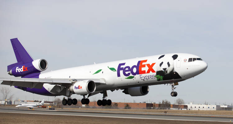 <p>FedEx's MD-11 touches down at Toronto Pearson International Airport with two pandas and their caretakers on board.</p>