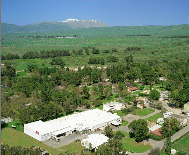 <p>LVT HQ and the kibbutz. In background is the Golan Heights, with snow-capped Mount Hermon towering over it (the part of Hermon you see is in Israel--the mountain straddles three countries: Israel, Lebanon, and Syria).</p>