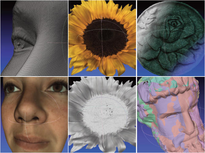 <p>A sampling of the kinds of detail the Fuel3D scanner is capable of capturing.</p>