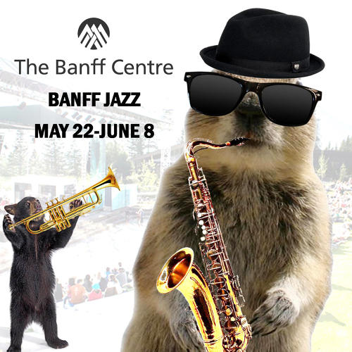 <p>&quot;I <a href=&quot;https://twitter.com/Banff_Squirrel/status/337249335425261571&quot; target=&quot;_blank&quot;>love watching these cats</a> (and bears) jam at the Club!&quot;</p>