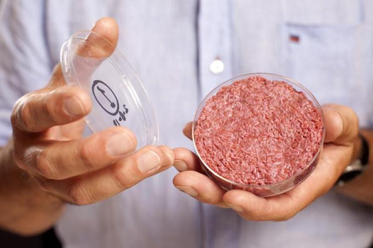 <p>Culture Beef is a synthesized meat product made from the harvested muscle cells taken from a living cow. The cells are nurtured in a laboratory, where they multiply to create tiny strands of meat muscle tissue.</p>