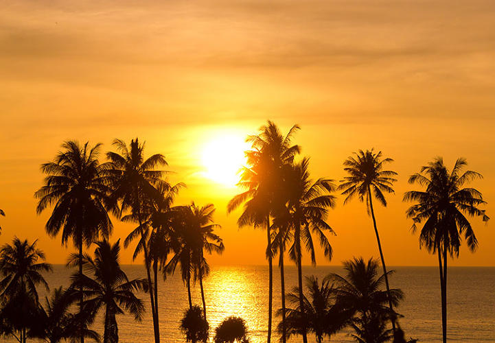 <p>The top two states crowning a ranking of 50 states may come as no surprise: California and Hawaii, both rich in sunshine and progressive attitudes toward environmental issues.</p>