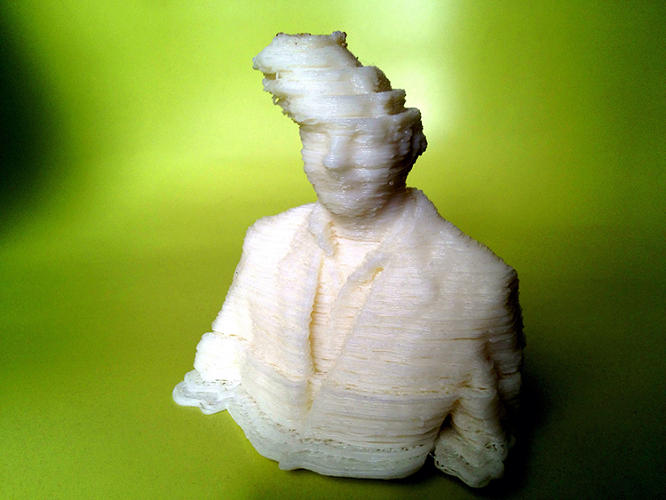 <p>The Art of 3-D Print Failure is an online community where enthusiasts show off the worst things ever printed.</p>