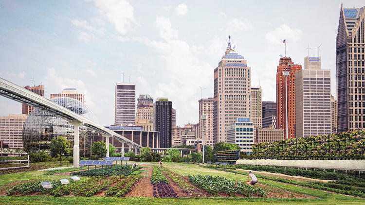 <p>Incredible Edible Cities | <strong>Detroit, USA, named 'Green City of the Decade' in the 2020's</strong></p>