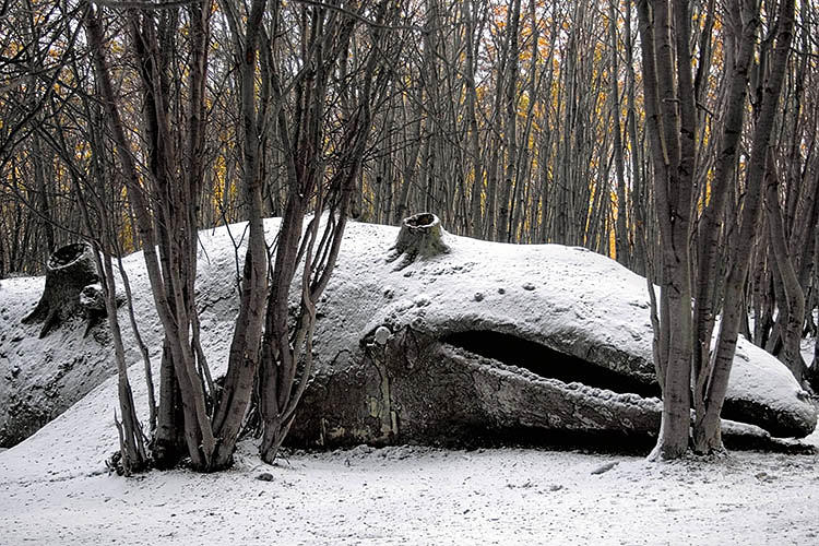 <p><em>My Dead Family</em>, a work from 2009, featured a 28-meter sculpture of a whale stranded in a forest.</p>  <p>Adrián Villar Rojas<br /> Mi familia muerta (<em>My dead family</em>), 2009<br /> Site specific sculpture<br /> Wood, rocks and clay<br /> 300 x 2700 x 400 cm<br /> Ushuaia´s End of The World Biennale 2nd Edition, Argentina<br /> Cortesy the artist and kurimanzutto<br /> Photo credits: Carla Barbero, Kayne Di Pilato<br /> © Adrián Villar Rojas</p>