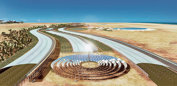 <p>&quot;Inspired by the water-harvesting habits of the Namibian fog-basking beetle, Sahara Forest Projects (like the one above in Qatar) provide one of the best practical examples of biomimicry,&quot; writes Porritt. &quot;There are now thousands of these Sahara Forest Projects all over the world.&quot; They help power greenhouses and local housing schemes.</p>