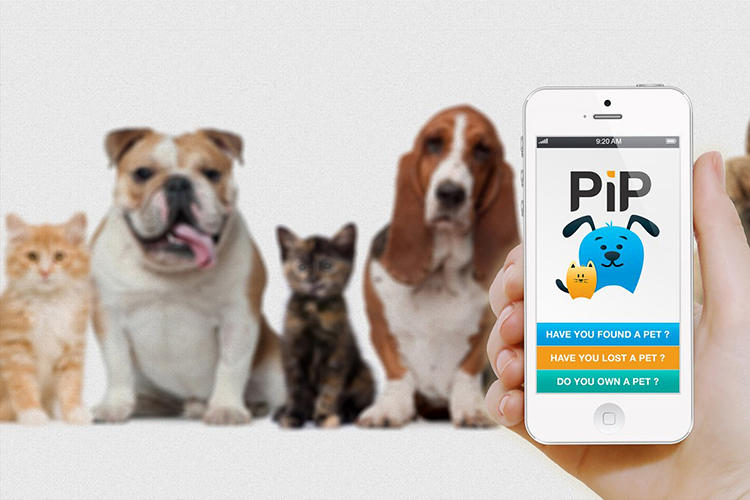 <p>The current methods of identifying pets all have drawbacks: Tags fall off. Tattoos get rubbed off. Microchips move around an animal's body, making detection difficult.</p>