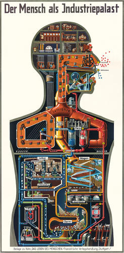 <p>Born in 1888, German scientist, doctor, and author Fritz Kahn was the grandfather of modern data visualization.</p>