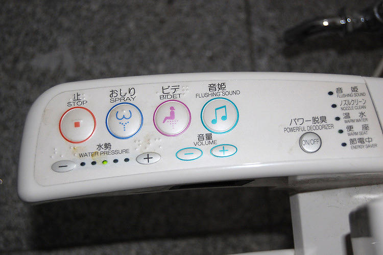 <p>But the modern Japanese toilet offers an array of features for the discerning toilet user. Some models play music. Others have heated seats, and some even have a deodorizing feature. This is truly the future of toilets.</p>