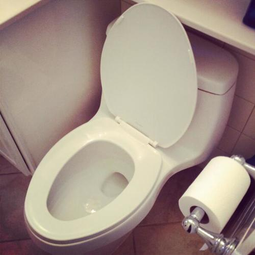 <p>Fast Company staffer @MilesKohrman43m shares his toilet.</p>