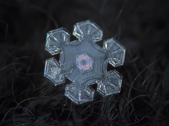 <p>Using old camera parts hacked together with boards and tape, Russian amateur photographer Alexey Kljatov has been capturing amazing shots of snowflakes falling on his Moscow balcony for the last five years.</p>
