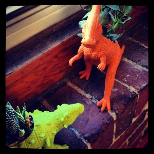 <p>@melsegall uses these dinosaur planters in the conference room to help make meetings more meaningful.</p>