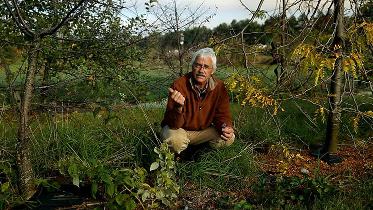 <p>What's the most environmentally friendly way to grow an apple?</p>