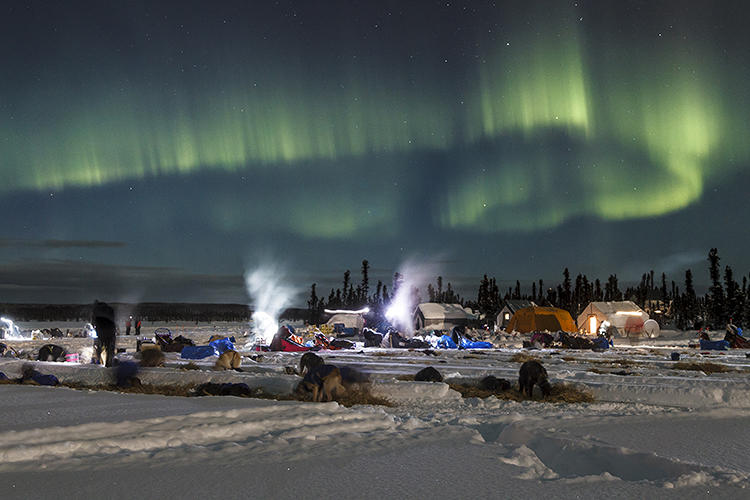 <p>Green aurora borealis and sherbet-colored sunsets are the backdrop for this festival of Olympian canines.</p>