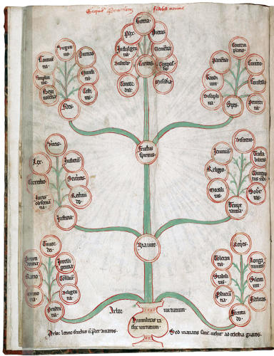 <p>Anonymous<br /> Tree of Virtues<br /> From Speculum Theologie<br /> circa 1300<br /> Rare book collection Lillian Goldman Law Library Yale Law School</p>