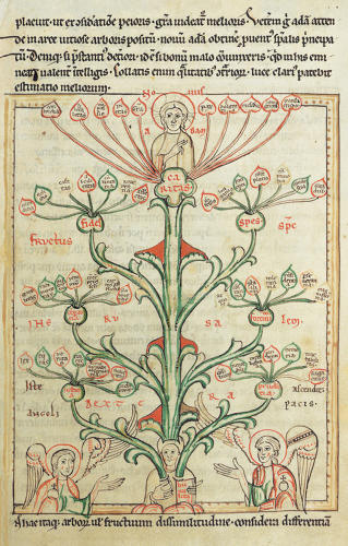 <p>Anonymous<br /> Tree of Virtues<br /> From Speculum Theologie<br /> Circa 1300<br /> Walters Art Museum</p>