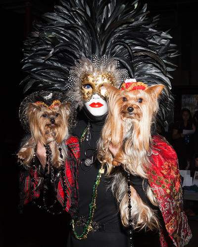 <p>Grace Forster, a retired UN staff member and <em>Doggie Moms</em> reality TV star, with Rosie and Portia at the Mardi Paws event in Manhattan. Rosie and Portia wear Alexander McQueen-inspired gowns and hats by Anthony Rubio.</p>