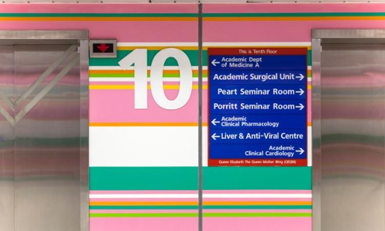 <p>The project was commissioned by the Imperial College Healthcare Charity Art Collection.</p>