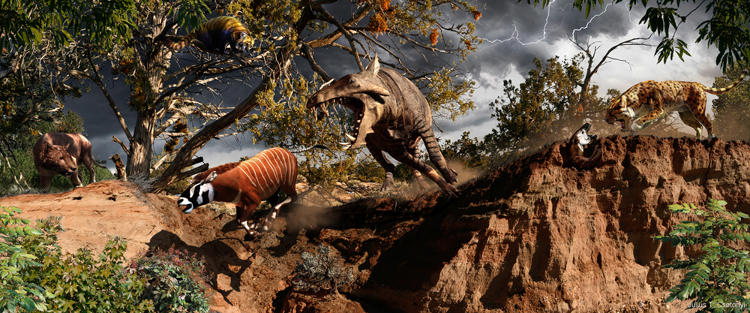 <p>From the Oligocene, an epoch of the Cenozoic known for its bizarre fauna. Ruled by sauropod-sized rhinos, fierce hyaenodontids (left), enigmatic oreodonts, and the near-cat sabre-toothed nimravids (right), it was also a time when the gigantic toothy hippo relatives called enteledonts (e.g. Archaeotherium) may have hunted diminutive early horses (e.g. Mesohippus) (center).</p>