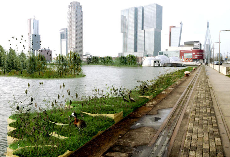 <p>As the plastic is captured, architects plan to recycle it into building blocks for new floating parks in the river. The modular plastic blocks join together into small platforms that can support trees, plants, and space for birds above the water, using methods similar to gardening on rooftops.</p>