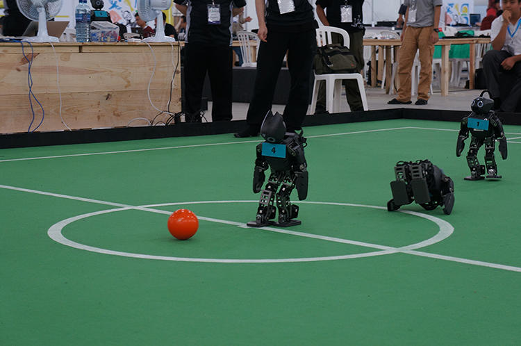 <p>Fouls happen in robot soccer, too. In this image, one RoboPatriot is down for the count.</p>