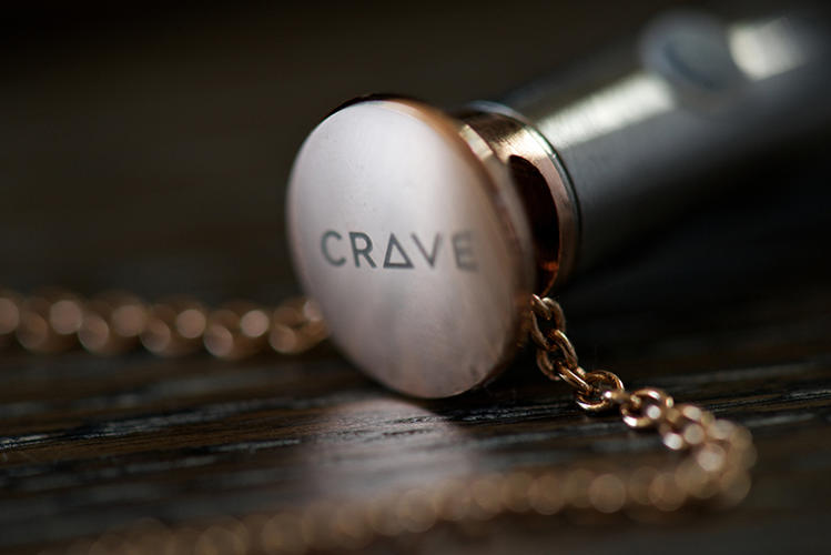 <p>With the Vesper, Crave wants to make the humble vibrator every bit as acceptable a piece of tech to wear in public as a FitBit, Nike+ Fuelband, or -- at worst! -- Google Glass.</p>
