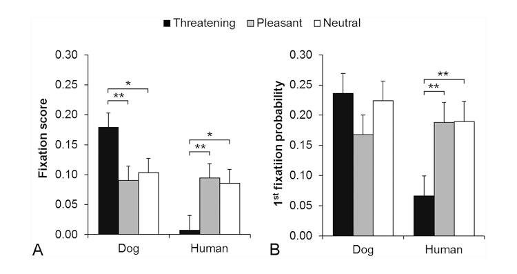 <p>The study tracked the &quot;voluntary eye gaze of domestic dogs during viewing of emotional expressions of dogs and humans.&quot; Photos of faces were used in the experiments,  in three expressions: &quot;threatening,&quot; &quot;pleasant,&quot; and &quot;neutral.&quot;</p>
