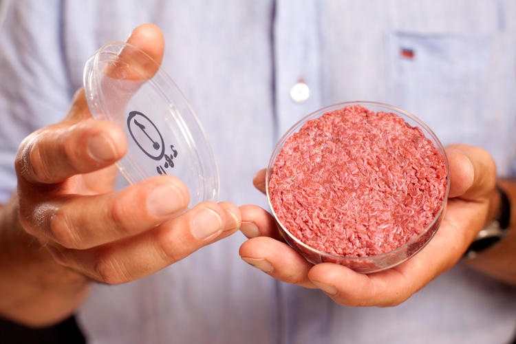 <p>This hamburger was grown in a lab. Is it the future of how we'll get our meat?</p>