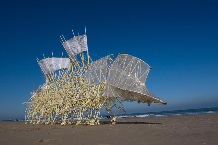 <p>Strandbeests have multiple pairs of legs--made of PVC pipe--that are set on a central crankshaft.</p>