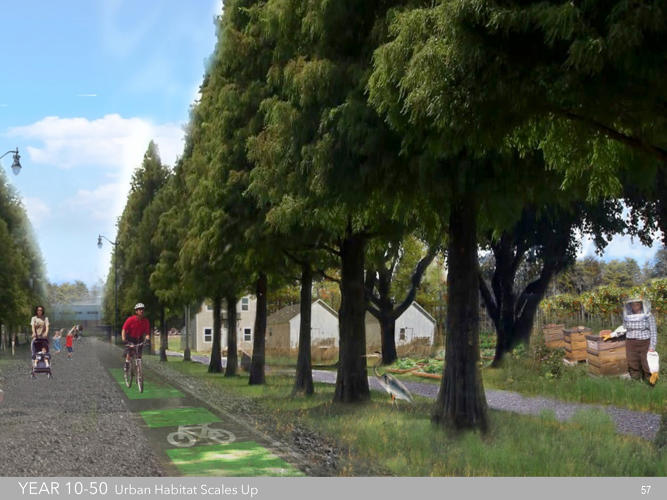 <p>One team suggested the neighborhood could alternate between homes, farms, tree nurseries, and trails.</p>