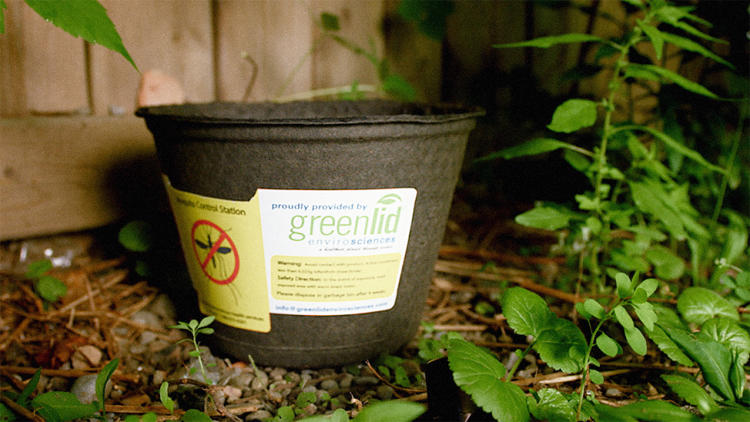 <p>Biotrap uses recycled cardboard to kills female mosquitos when they try to lay eggs.</p>