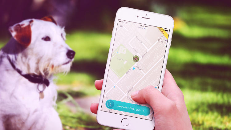 <p>This much-written-about &quot;Uber for dog poop&quot; app is not real--but it is a pretty depressing satire of the gig economy.</p>