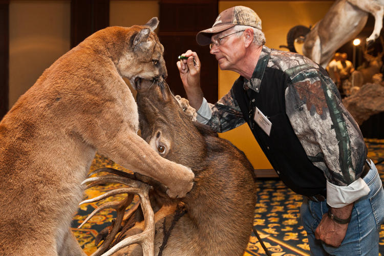 <p>Dust to dust, World Taxidermy Championships. Springfield, Illinois 2013</p>
