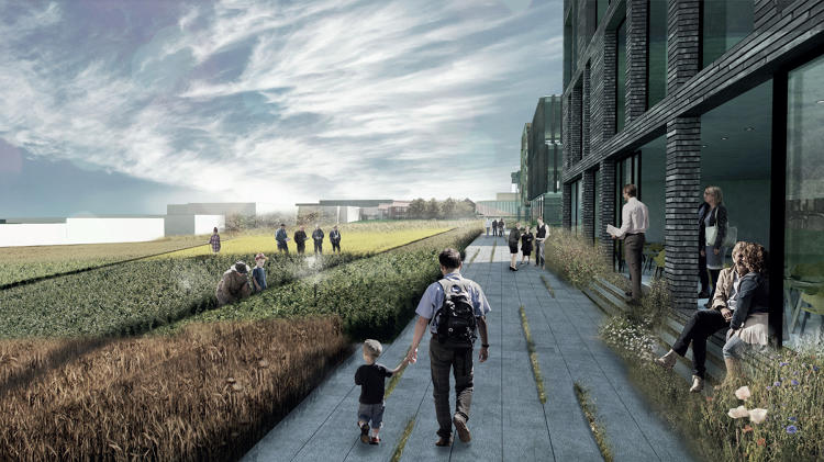 <p>A new project in Denmark suggests a different approach: What if a dense neighborhood was designed to coexist with full-scale agriculture?</p>